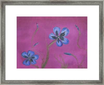 Blue Flower Magenta Background Framed Print