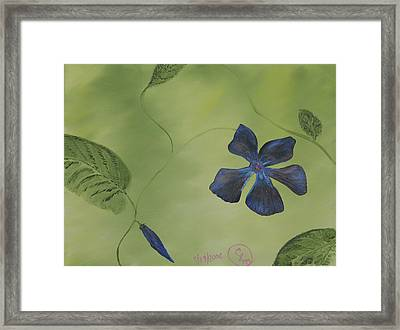Blue Flower On A Vine Framed Print