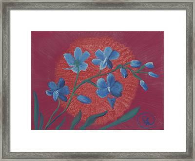 Blue Flower On Magenta Framed Print