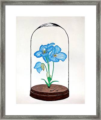 Blue Flower Under Glass Cloche Framed Print by Edwin Alverio