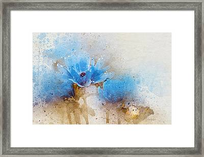 Blue Flowers 4a Framed Print