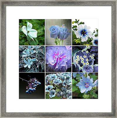 Blue Flowers All Framed Print