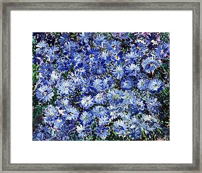Blue Flowers Framed Print by Don  Wright