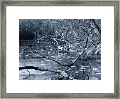 Blue Freeze Framed Print by Wild Thing