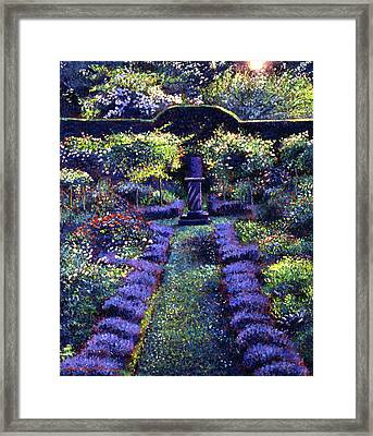 Blue Garden Sunset Framed Print by David Lloyd Glover