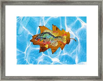 Blue Gill Framed Print