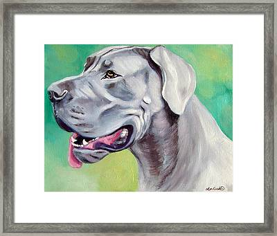 Blue Great Dane Framed Print by Lyn Cook