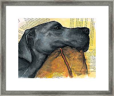 Blue Great Dane On Pillow Framed Print by Christas Designs