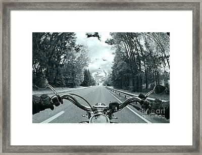 Blue Harley Framed Print
