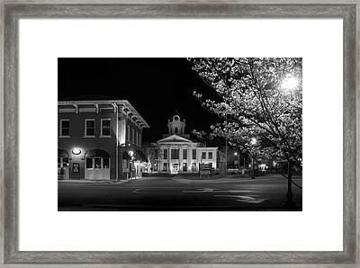 Blue Heritage Dogwood In Black And White Framed Print