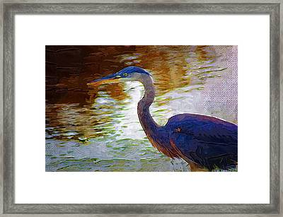 Framed Print featuring the photograph Blue Heron 2 by Donna Bentley