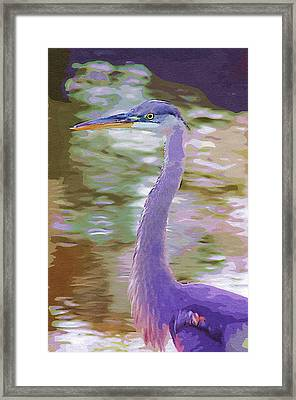 Framed Print featuring the photograph Blue Heron by Donna Bentley