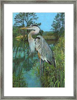 Framed Print featuring the painting Blue Heron by John Dyess