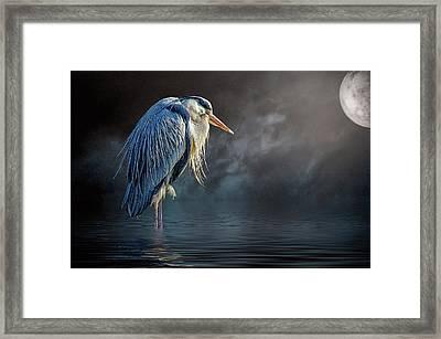 Blue Heron Moon Framed Print