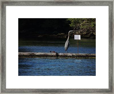 Blue Heron Private Property Framed Print