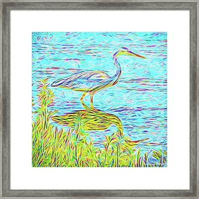 Blue Heron Reflections - Lake In Boulder County Colorado Framed Print
