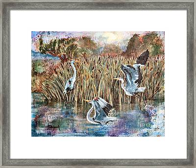 Blue Herons And Cats Framed Print