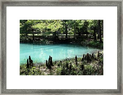 Blue Hole Spring Framed Print by Debra Forand