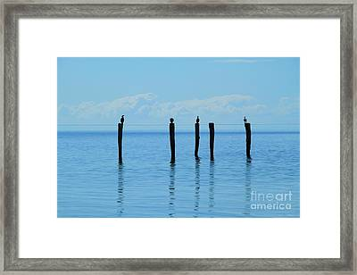 Framed Print featuring the photograph Blue Horizon by Stephen Mitchell