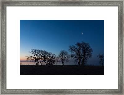 Blue Hour Moon - Bare Trees Silhouettes On The Lake Shore Framed Print by Georgia Mizuleva