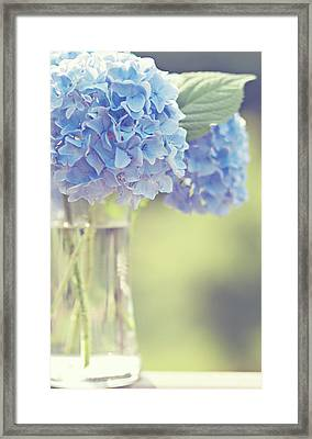 Blue Hydrangea Framed Print by Photography by Angela - TGTG