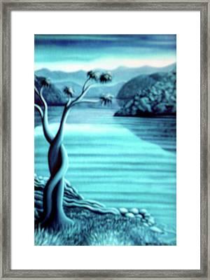 Blue In Marlborough Nz Framed Print by Barbara Stirrup