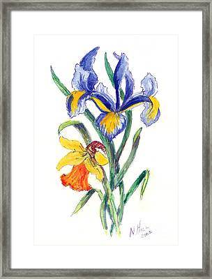 Blue Iris And Daffodil Framed Print by Nell Hill