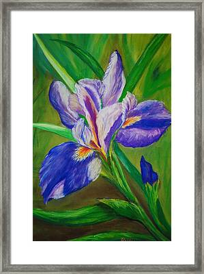 Framed Print featuring the painting Blue Iris by Debbie Baker