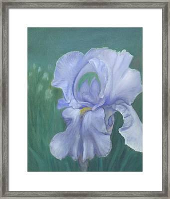 Blue Iris Framed Print by Laurel Ellis