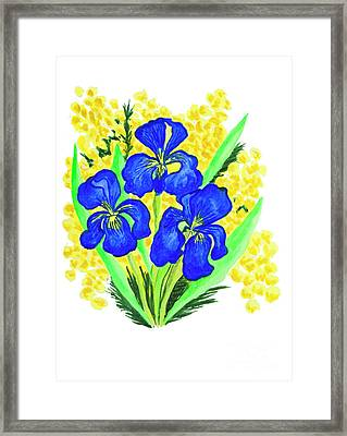 Blue Irises And Mimosa Framed Print