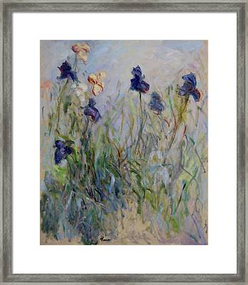 Blue Irises In The Field, Painted In The Open Air  Framed Print