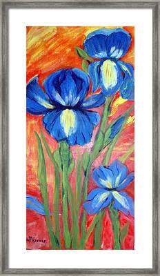 Blue Irises Framed Print by Lia  Marsman