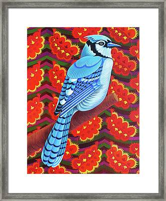 Blue Jay Framed Print by Jane Tattersfield