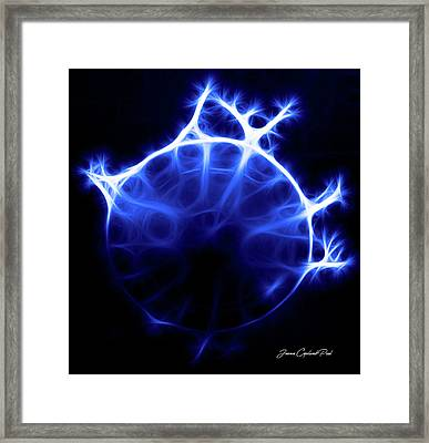 Blue Jelly Fish Framed Print