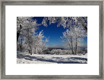 Blue Knob Framed Print