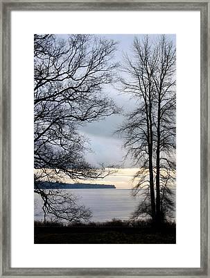 Blue Lace Framed Print