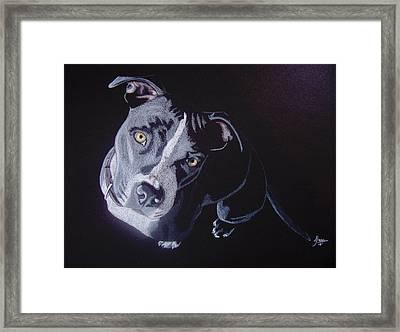 Blue Light Framed Print by Stacey Jasmin