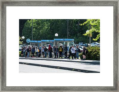 Blue Line On Campus Framed Print