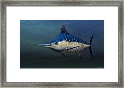 Framed Print featuring the painting Blue Marlin by Walter Colvin