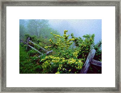 Blue Marsh Dam Fog 003 Framed Print