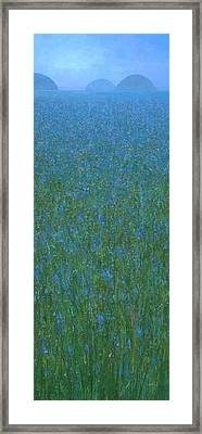 Blue Meadow 1 Framed Print