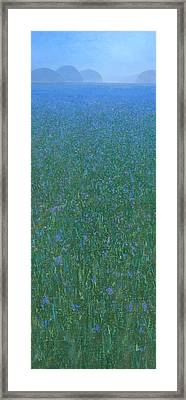 Blue Meadow 2 Framed Print by Steve Mitchell