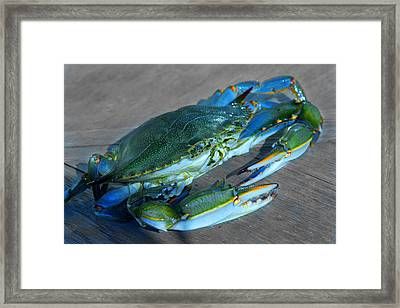 Blue Framed Print by Mike Flynn