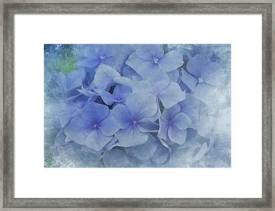 Framed Print featuring the photograph Blue Moments by Elaine Manley