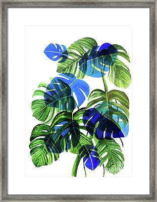 Blue Monstera Framed Print by Ana Martinez