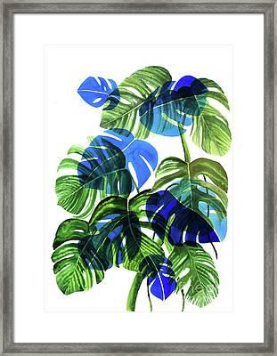 Blue Monstera Framed Print