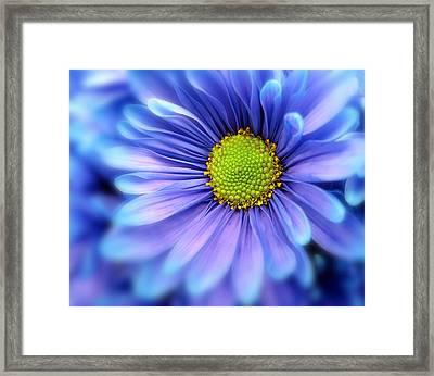 Blue Mood Framed Print by Jessica Jenney