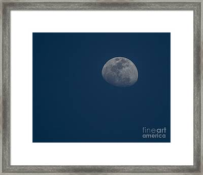 Blue Moon Framed Print by D Wallace