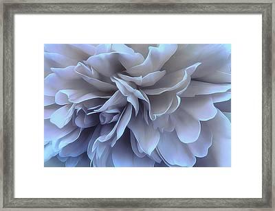 Framed Print featuring the photograph Blue Moon by Darlene Kwiatkowski