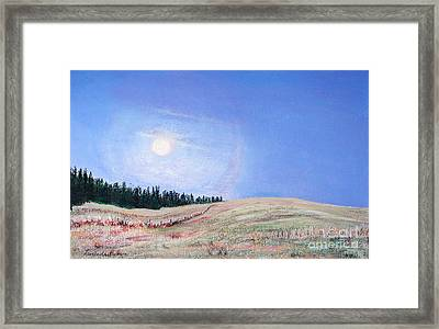 Blue Moon Framed Print by Lucinda  Hansen